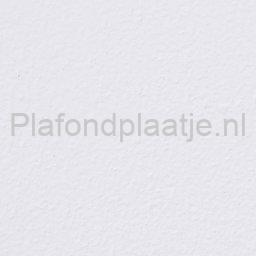 armstrong-Plain